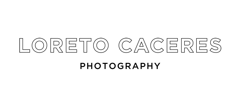 Loreto Caceres: Brooklyn Hudson Valley Wedding Photographer